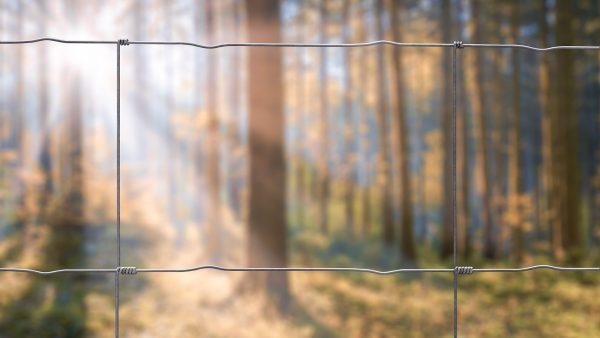 Skogsplanteringsnät, vridknut